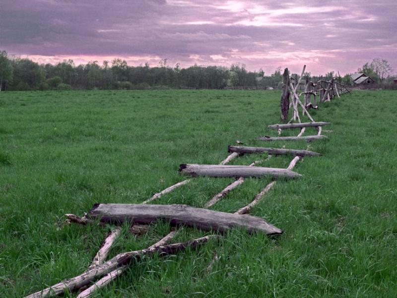 Как лишить собственника земли, если он забросил участок?