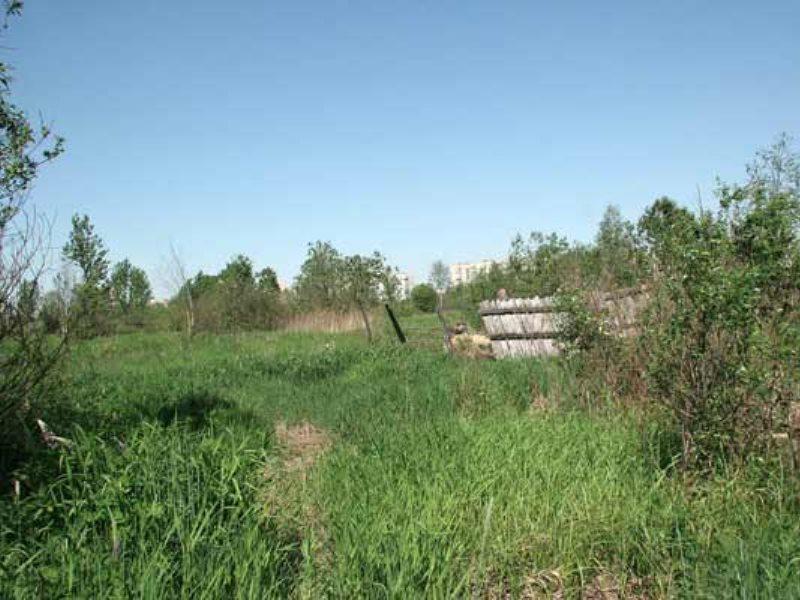 Процедура оформления бесхозного земельного участка в свою собственность