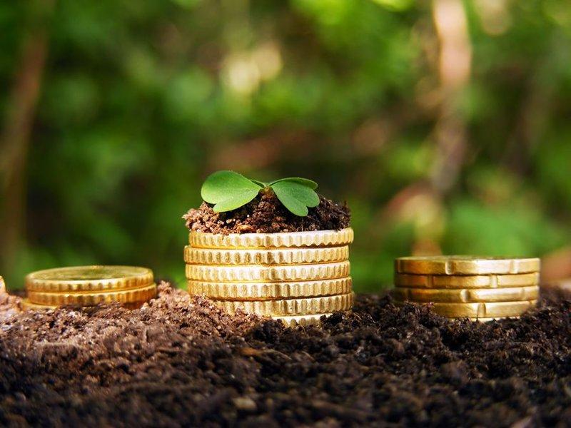 Когда земельный налог за участок для ИЖС рассчитают по повышенной ставке?